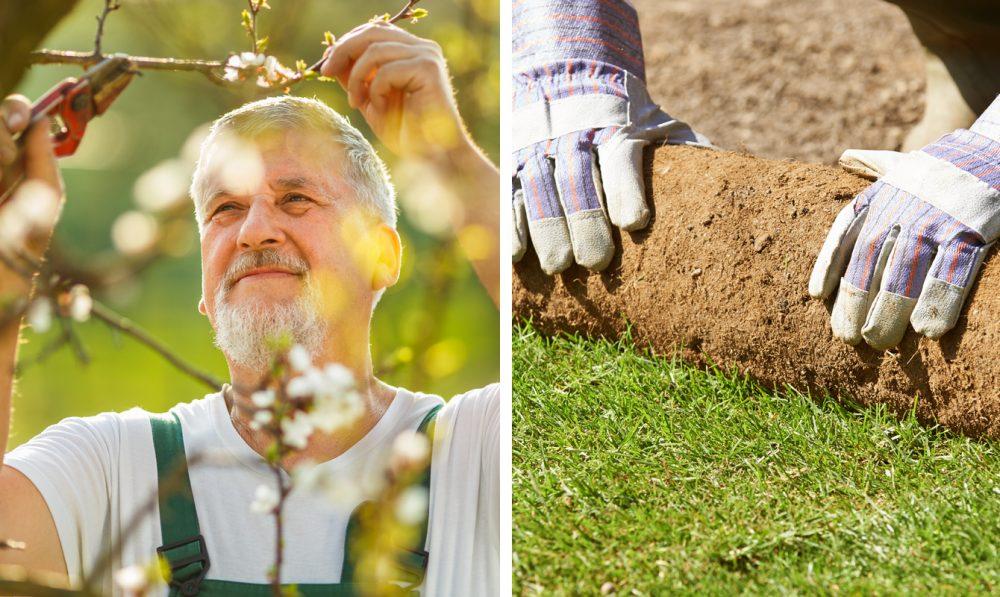 Trädgårdstjänster – vi gör din trädgård levande och fin